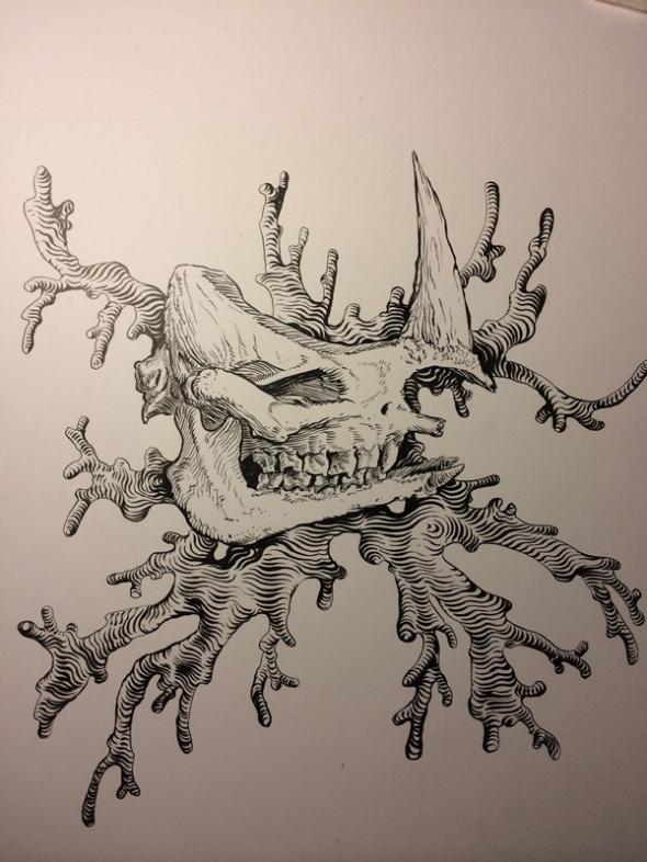 4-5_skull